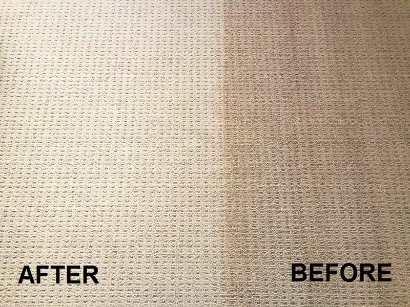 carpet cleaned before and after comparison
